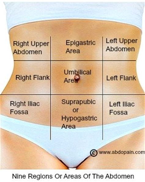 lower right side abdominal pain after c section right upper quadrant of the abdomen boundaries organs