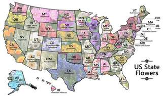 state flowers usa map map shows every u s state flower
