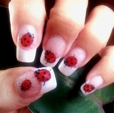 easy nail art ladybug ladybug nail art lb1 49 nail art waterslide transfers decal