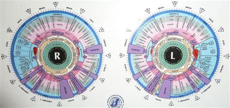 Dr Morse Detox Certification by Iridology Charts Grapegate