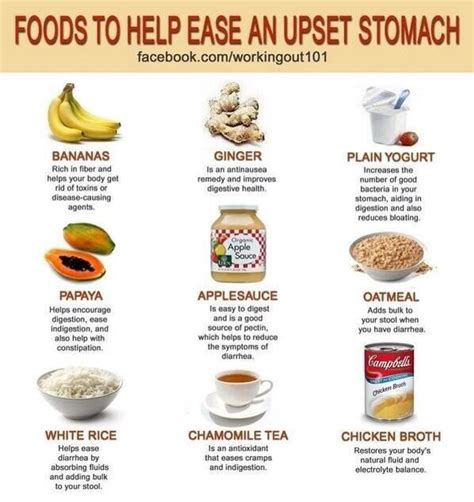 Detox Nausea Remedy by Best 25 Upset Stomach Remedy For Ideas On