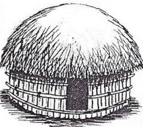 gambar mewarnai rumah adat papua bahasapedia bahasapedia