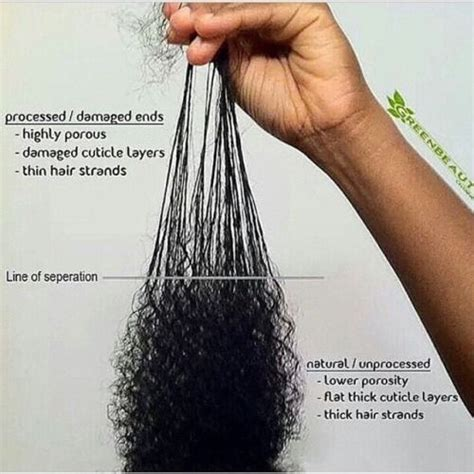 hair styles for over processed hair 17 best images about natural hair styles on pinterest