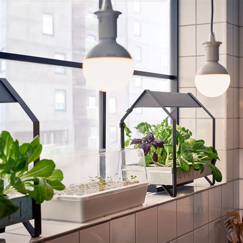 ikea garden kit ikea moves into indoor gardening with hydroponic kit sig