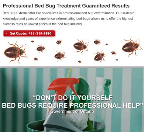professional bed bug exterminators 28 images bed bug