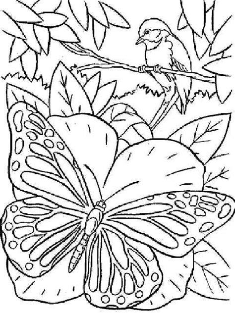 coloring pages of rainforest flowers coloriage en tous genre