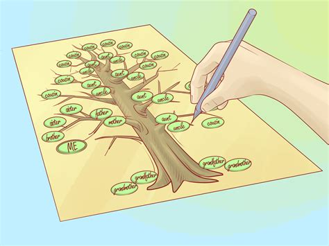 drawing a family tree template how to draw a family tree 10 steps with pictures wikihow
