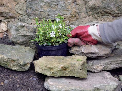 How To Make A Rock Garden Make A Shady Rock Garden Hgtv