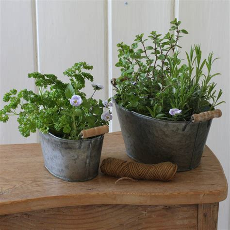 bathtub planters two mini tub planters by magpie living
