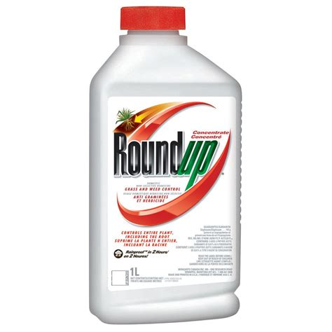The Roundup by Roundup Roundup 1l Concentrate Lowe S Canada
