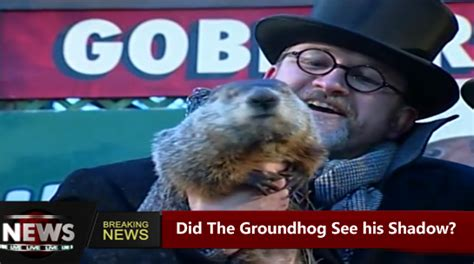 groundhog day yearly results did the groundhog see his shadow today in 2018 results