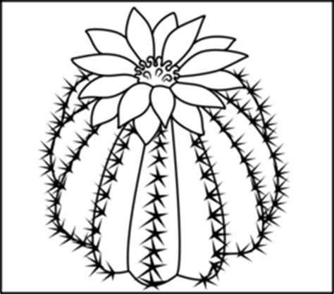 cactus flower coloring page cactus coloring page printables apps for kids