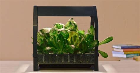 ikea garden kit this epic gardening kit from ikea allows you to grow food year round davidwolfe com