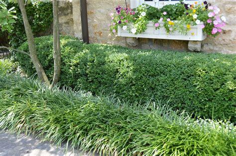Landscape Design Essentials For The Homeowner The Oak Leaf Landscape Plants