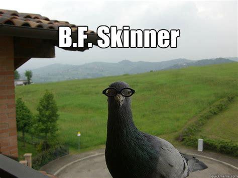 B Meme - b f skinner skinner quickmeme