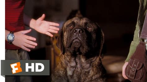 hotel for dogs cast hotel for dogs 5 10 clip all that for a look out the window 2009 hd