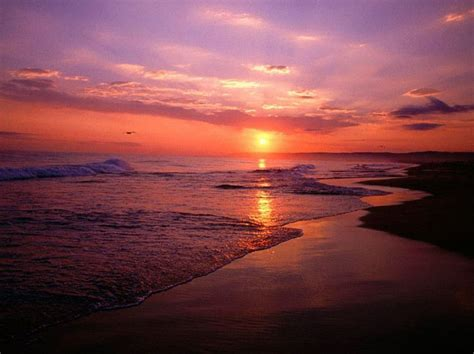 you seen a sunset before books pin by itrip vacations on spectacular sunsets