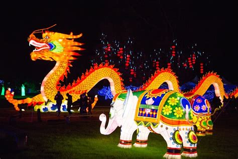 Cheap Places For Home Decor see chinese lanterns shaped like a huge dragon and a life