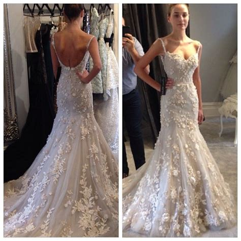 Steven Khalil This Is Absolutely I Redible Everything