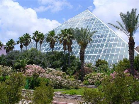 Moody Gardens Galveston by Seven Things To Do In Galveston Bootsnall
