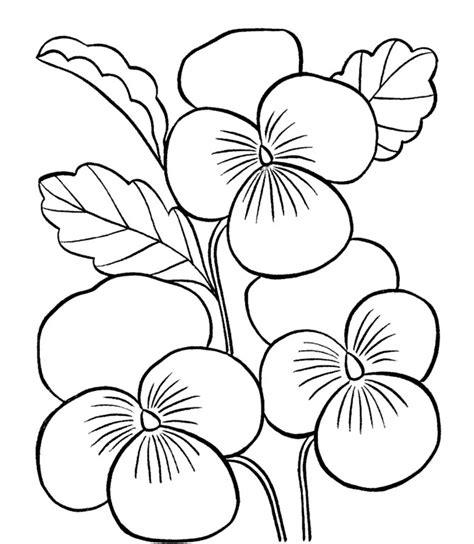 gambar mewarnai bunga matahari mawar tulip melati gambarcoloring