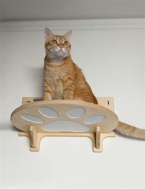 arredamento per gatti arredamento per gatti archivi athleticat