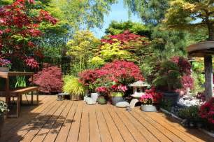 potted patio plants 35 patio potted plant and flower ideas creative and