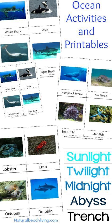 themes zone montessori theme ocean preschool activities printables