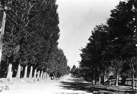 Carson City Records Carson City History