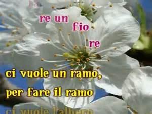 testo di ci vuole un fiore ci vuole un fiore songtext sergio endrigo lyrics