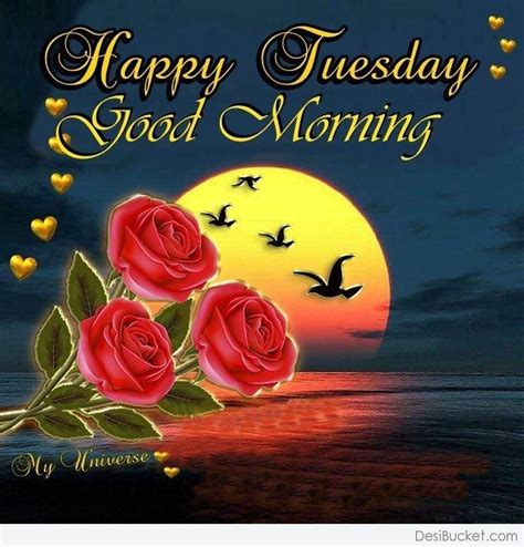 tuesday images morning wishes on tuesday pictures images