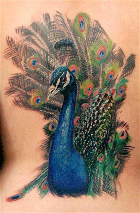 peacocks tattoo peacock bird tattoos display color and 171