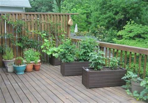 deck gardening containers deck garden 8 vegetable container garden on deck