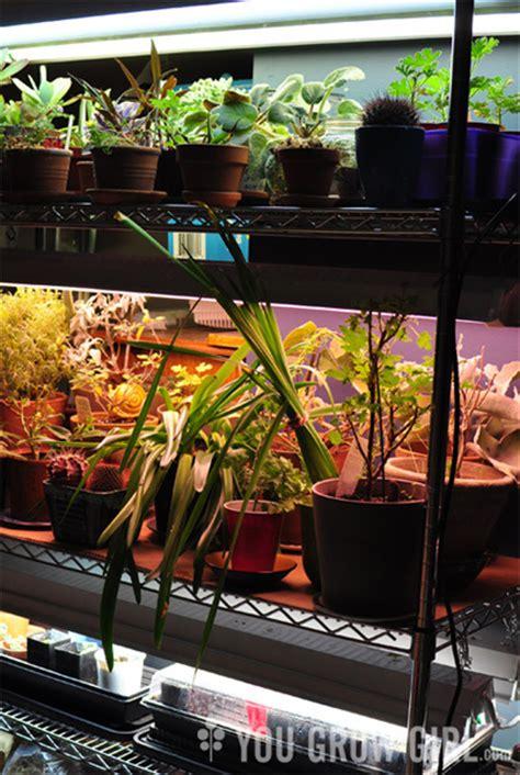 build   cost diy plant lighting system  grid