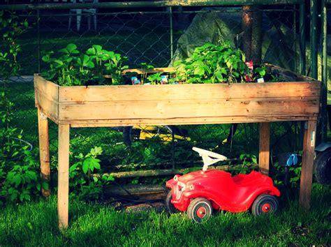 lavori in giardino lavori in giardino