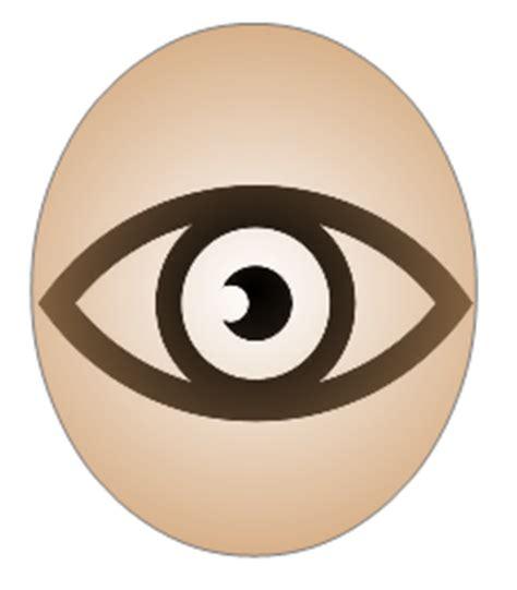 ilusiones opticas neurologia diario de trabajo el cerebro y las ilusiones 243 pticas