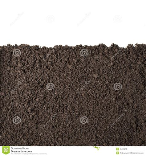 soil section soil section texture isolated on white stock photo image