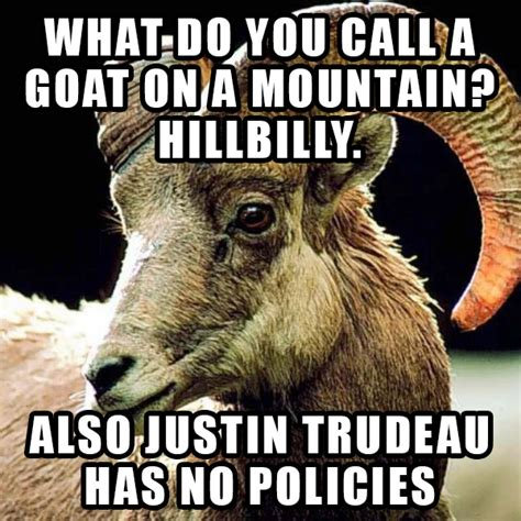Billy Goat Meme - le new metacanada meme dyslexic billy goat comedian who