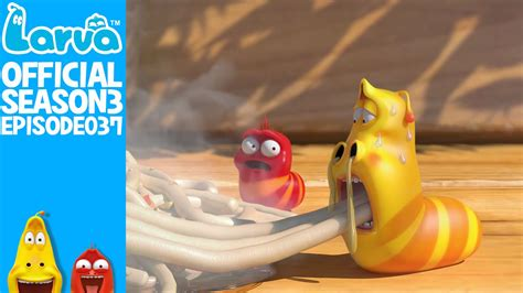 film larva season 3 official cup noodle larva season 3 episode 37 youtube