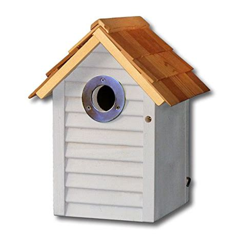 bird nest box fitted with wireless colour camera with