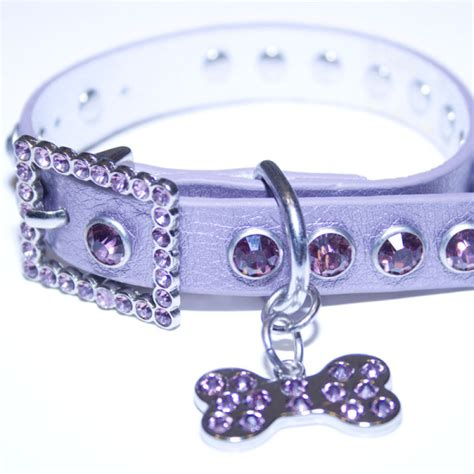 collars with bling purple leather bling rhinestone collar with bling doggie bone charm sizzle city
