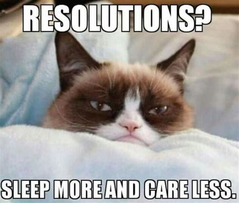 Grumpy Cat Sleep Meme - 32 memes for people who just want to sleep