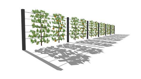 Sichtschutzkombinationen Teil 6 Sichtschutz Mit Sichtschutz Im Garten Teil
