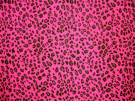 Lnice 28 Pink Leopard pink leopard wallpaper wallpapersafari