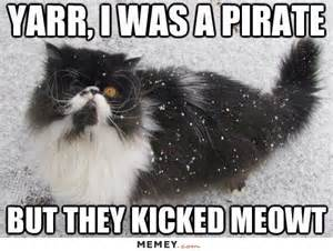 pirate memes funny pirate pictures memey com