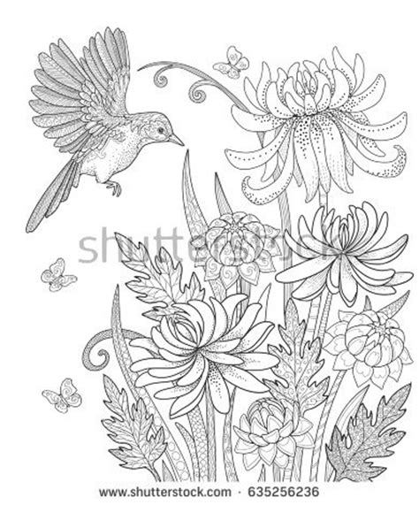 butterfly garden colouring book for adults books bird flowers butterfly garden page stock vector