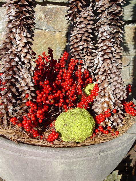 garden housecalls woody plants  pots