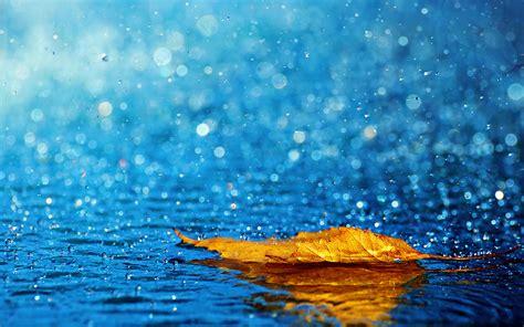 wallpaper rain beautiful rain hd wallpapers for desktop one hd