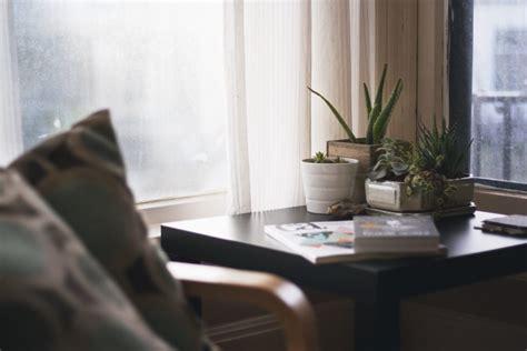 plants   bedroom    sleep  true