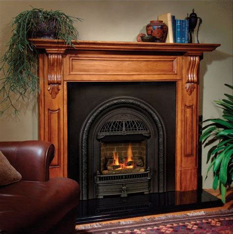 Firebox Fireplace by The Is A Style Gas Insert Designed To